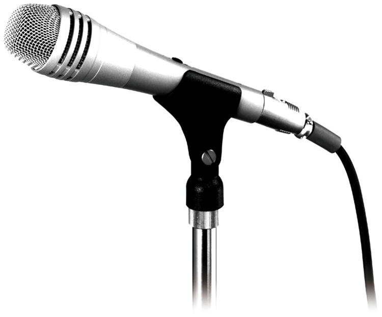 DM-1500 Unidirectional Microphone